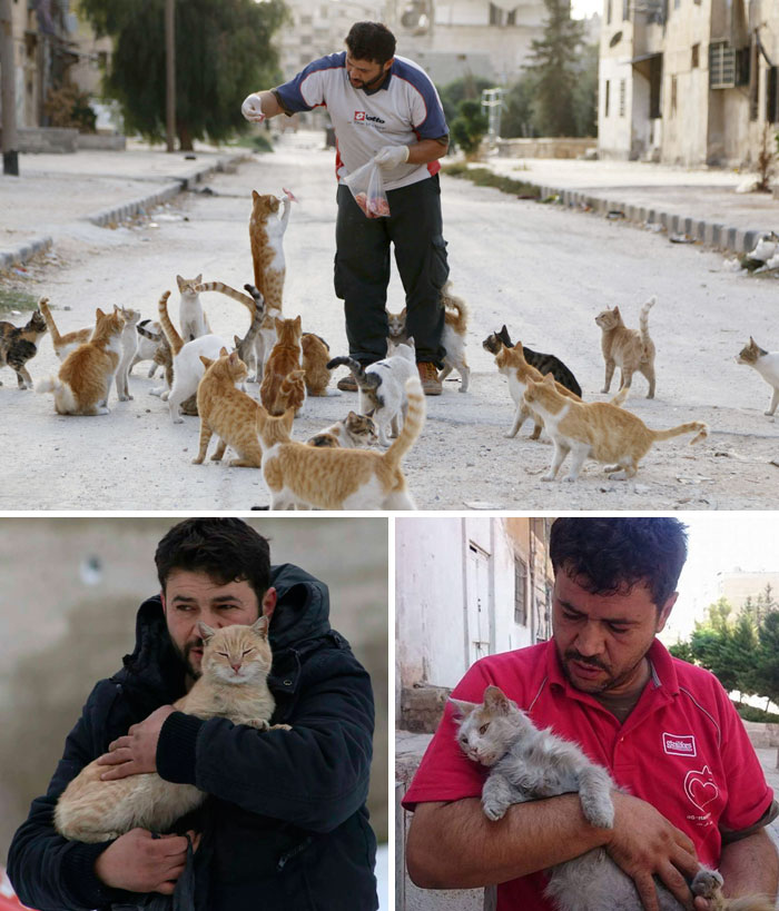 40 Times 2016 Restored Our Faith In Humanity - People Are Fleeing War-Torn Aleppo But This Man Is Staying To Care For Abandoned Cats