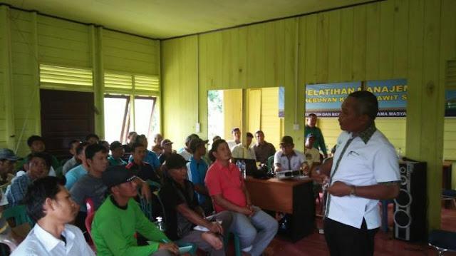 Kegiatan Tanoto Foundation Dalam Meningkatkan Hasil Pertanian