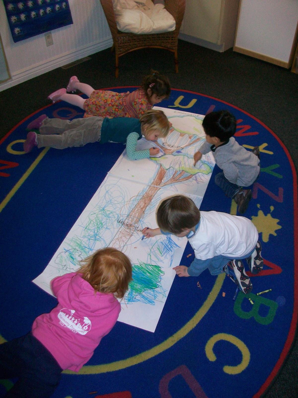 Harmony Preschool Rainforest Theme