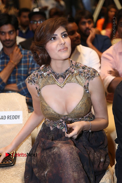 Actress Model Naaz Norouzi Pos in Leg Spit Dress at SIIMA Short Film Awards 2017  0038