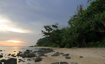 Tempat wisata di Garut Leuweung Sancang