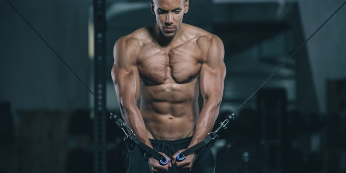 The 4 Top Exercises For The Perfect Pec Workout