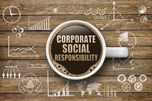 CSR Data Portal MCA