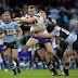 NRL Preview Round 11: Sharks v Bulldogs