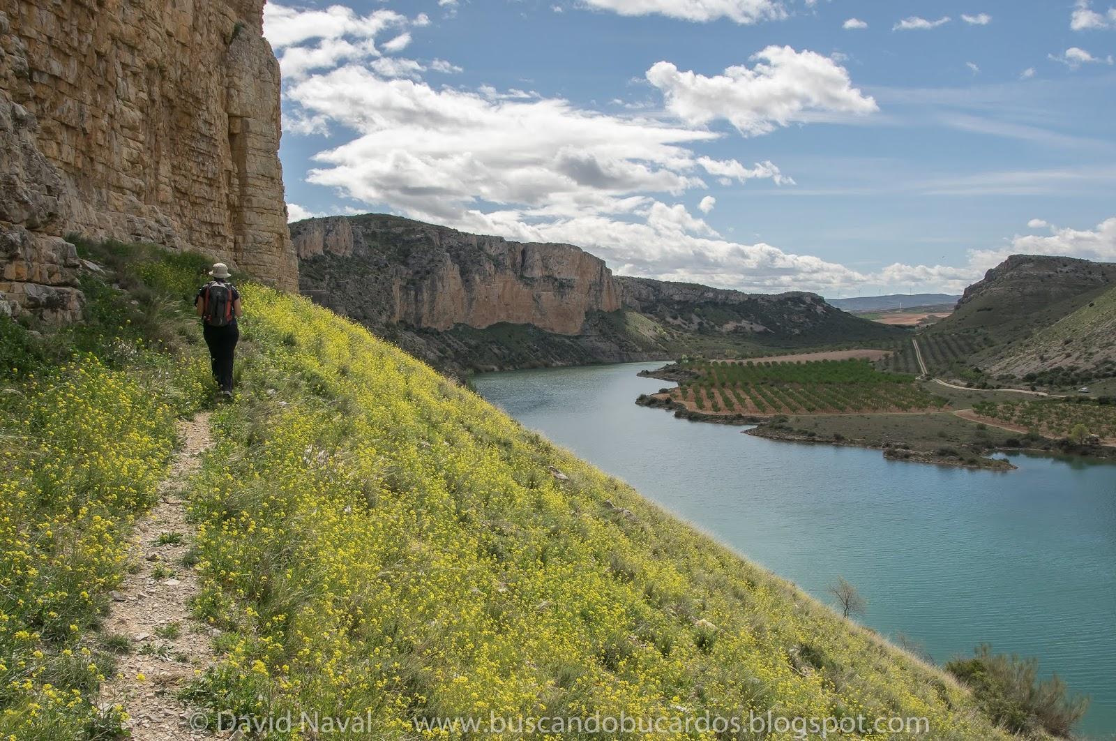 Muel mezalocha mirador del hocino rutas por el pirineo for Mirador del pirineo