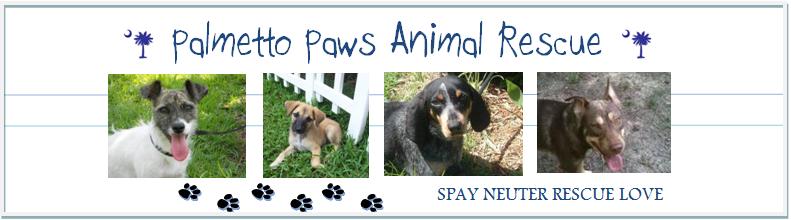 Palmetto Paws Animal Rescue