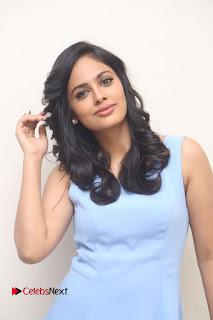 Actress Nandita Swetha Pictures at Ekkadiki Pothavu Chinnavada Teaser Launch 0001