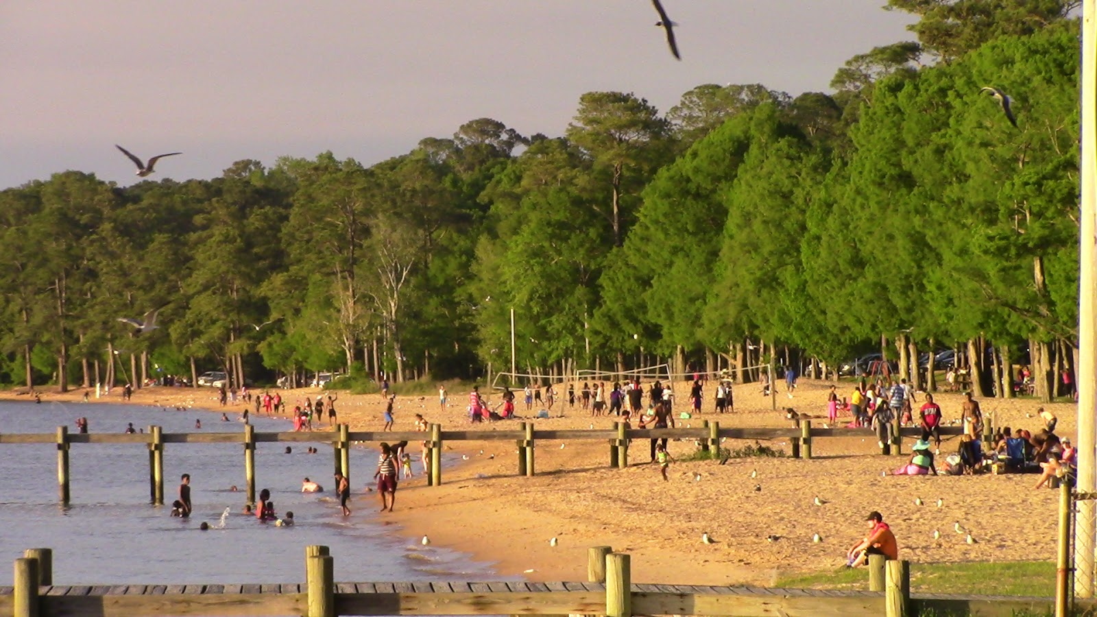 The Fairhope Times : Fairhope Beaches Being \
