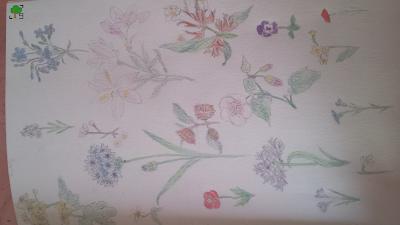 rysunek kwiatów 1
