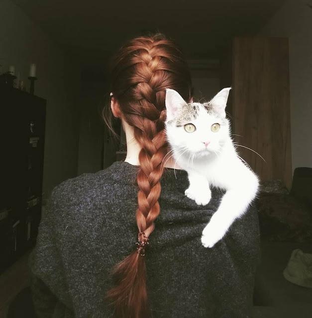 Jak pogrubić włosy, czyli moje efekty po senesie z henną