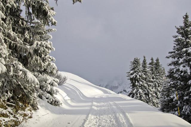 Rochebrune Megeve Alpii Francezi