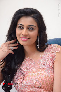 Actress Neha Hinge Stills in Pink Long Dress at Srivalli Teaser Launch  0065.JPG