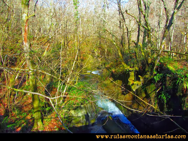 Ruta Pico Vízcares: Río Infierno