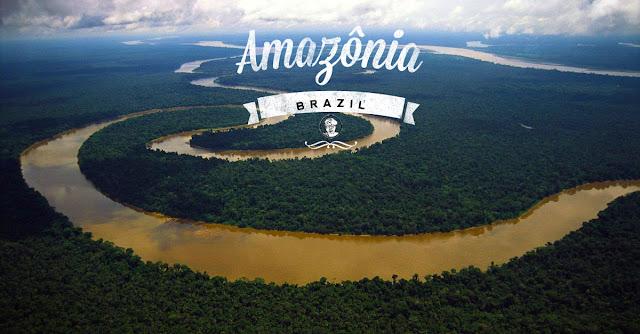 亞馬遜河是世界最大的流域。-圖:WWF