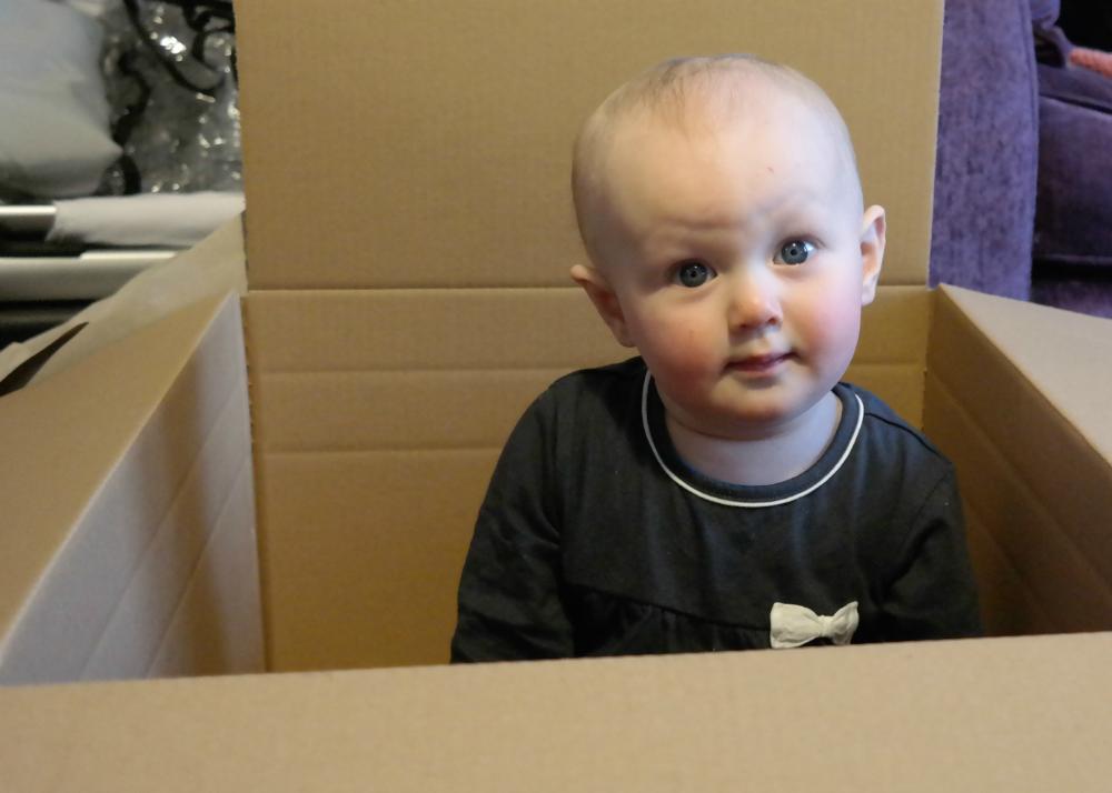 Matilda Rooftops in a cardboard box