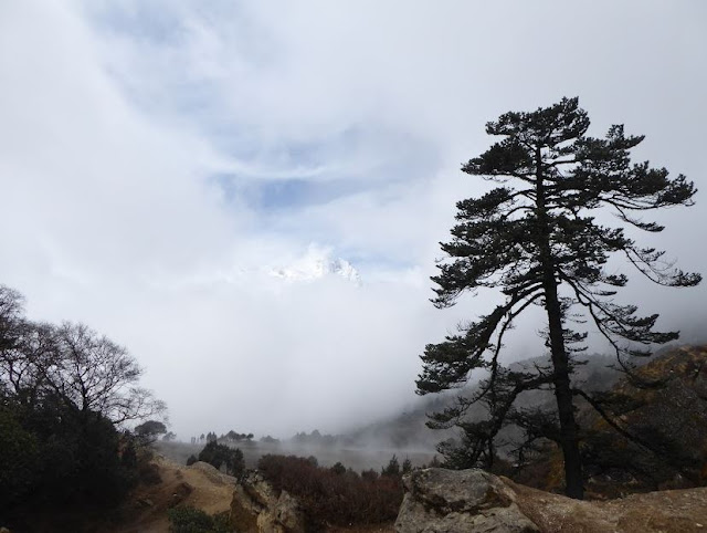 vetta intravista tra le nubi