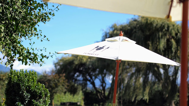 Blenheim wineries: umbrella for shade at Forrest Wines