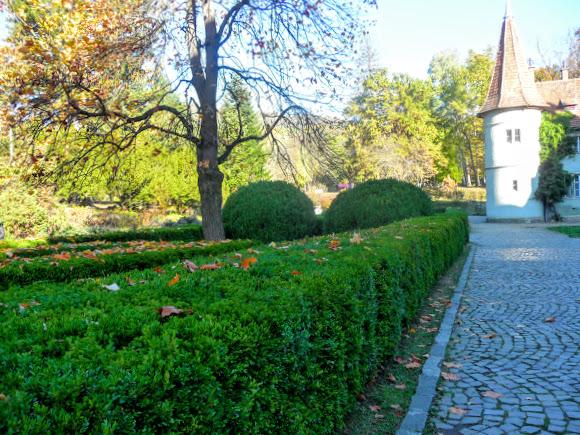 Чинадиево. Замок графов Шерборнов. Парк