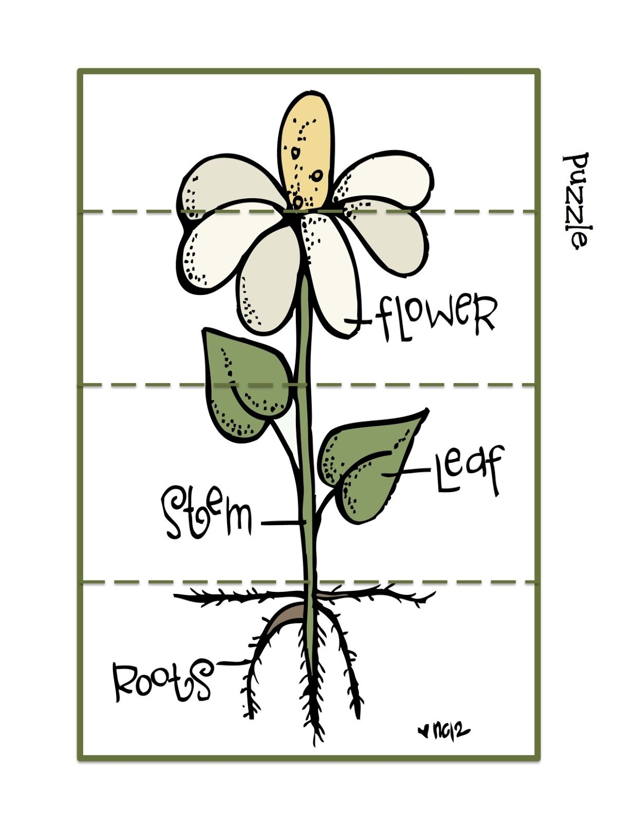 Worksheet For Flowers