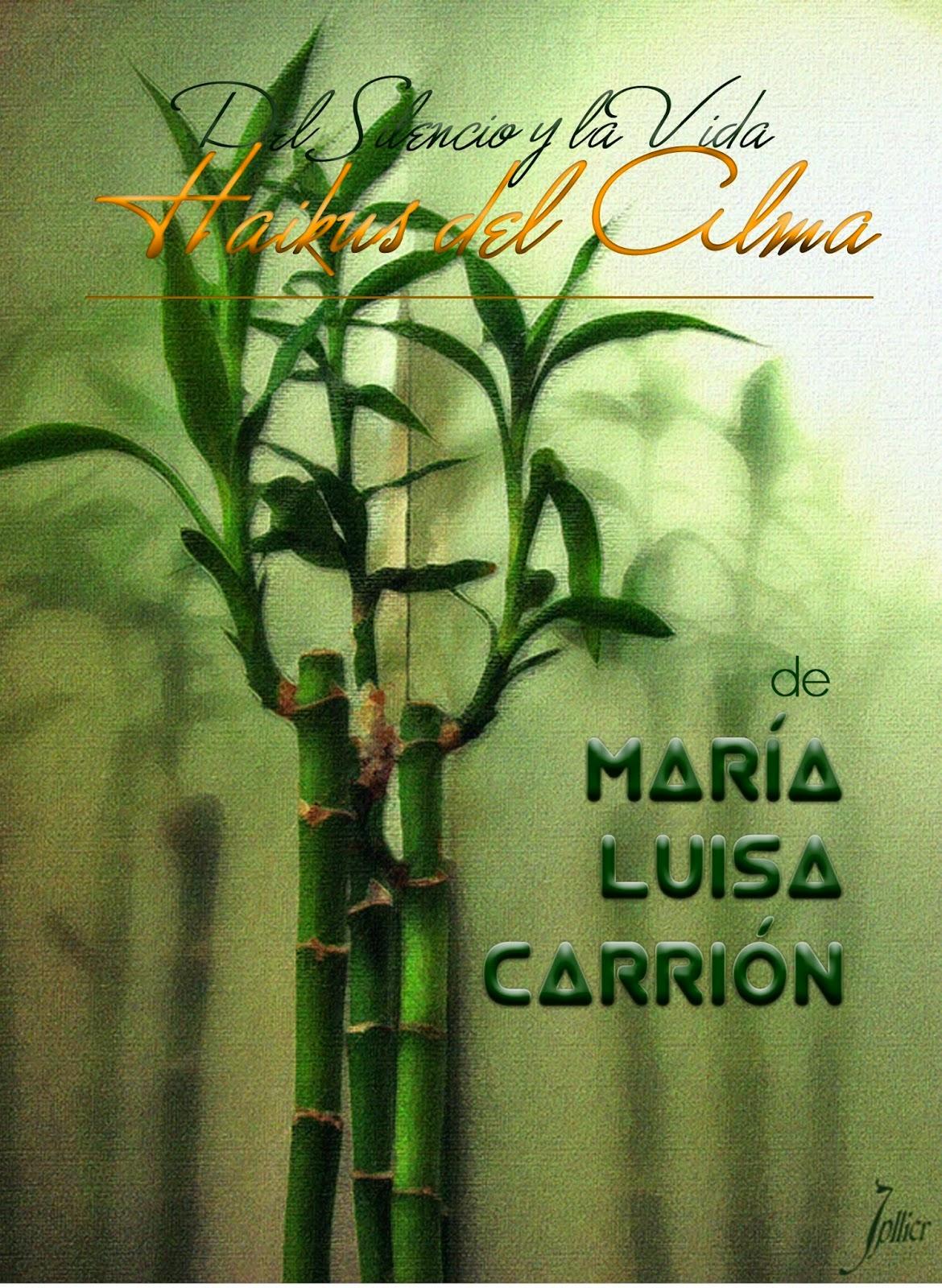 http://www.unionescritores.com/2015/04/del-silencio-y-la-vida-haikus-del-alma.html