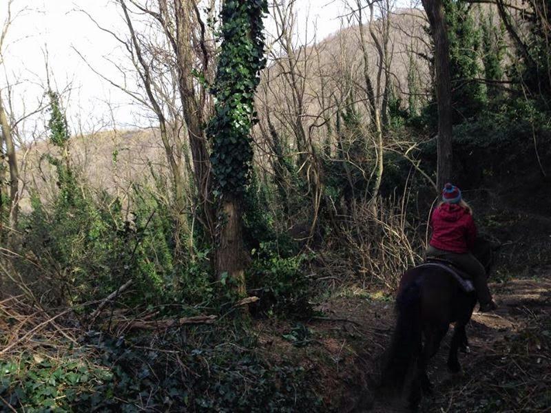 Cavaliere Della Neve – Horse Riding Tour, Naples