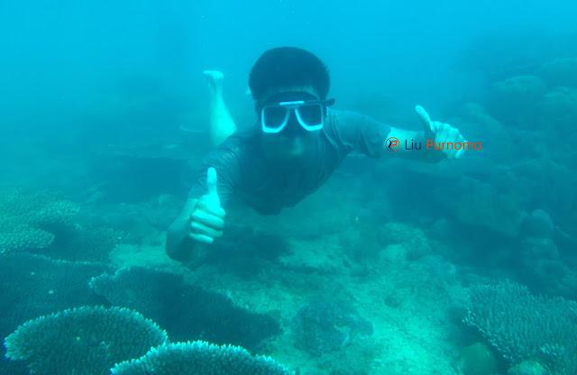Rahasia, Inilah Cara Pergi Ke Pulau Lemukutan yang Mudah dan Murah
