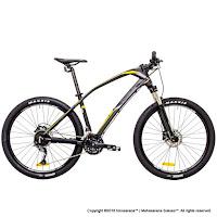 Sepeda Gunung Thrill Ravage 4.0 Inci