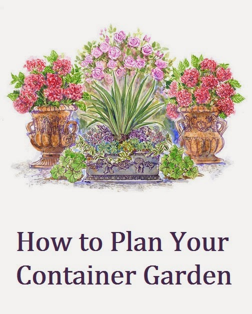 How To Plan Your Container Garden My Favorite Things