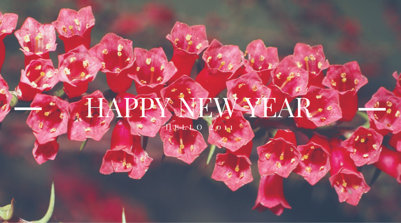 Happy New Year from High-Heeled Love. Here's to a great 2011!