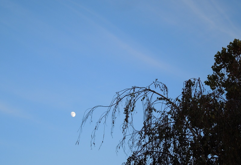 Moon Opposite Setting Sun, © B. Radisavljevic
