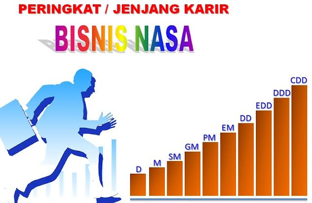 peringkat jenjang karir bisnis nasa