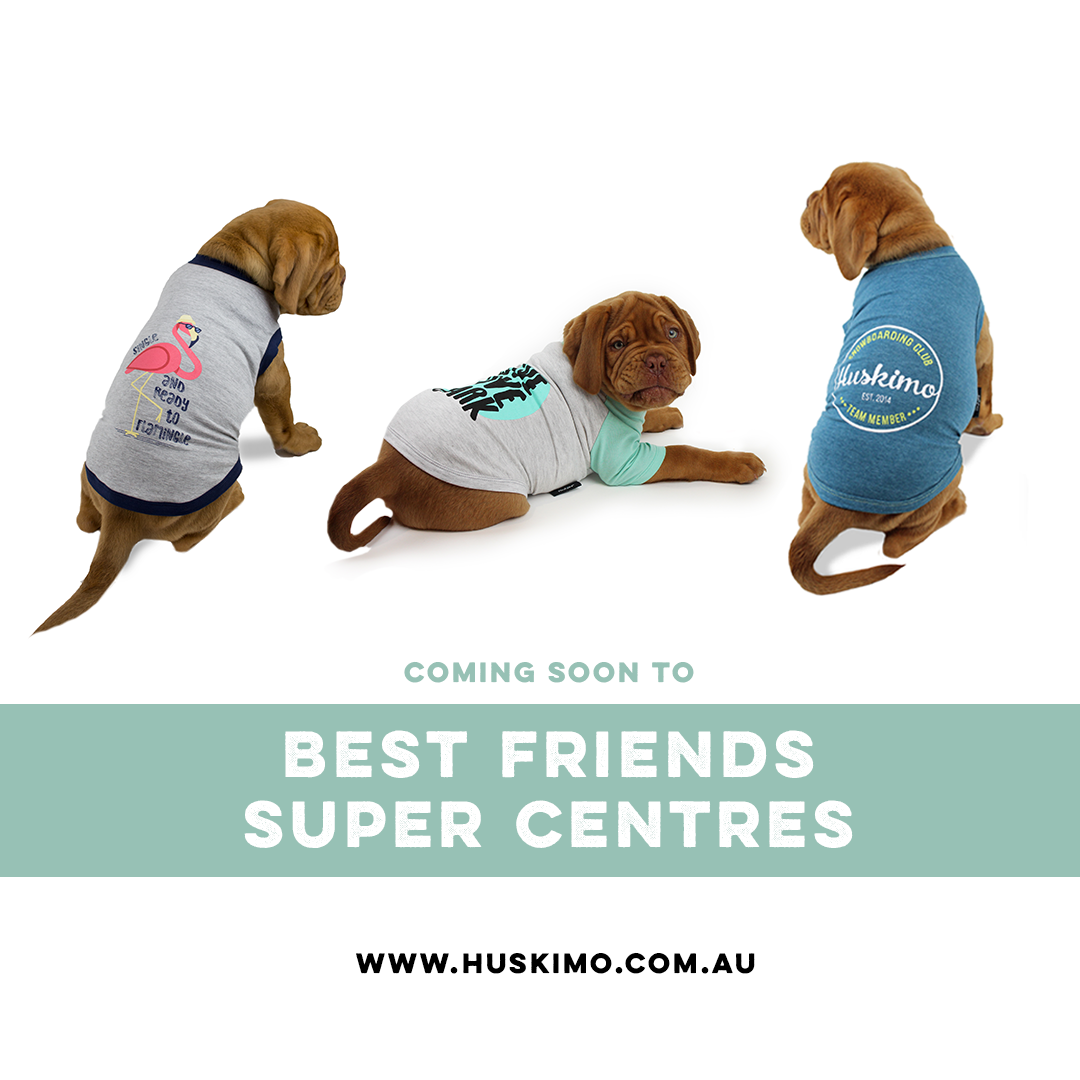 2316893e0b69 Best Christmas Gift Guide for Dogs | Australian Dog Lover