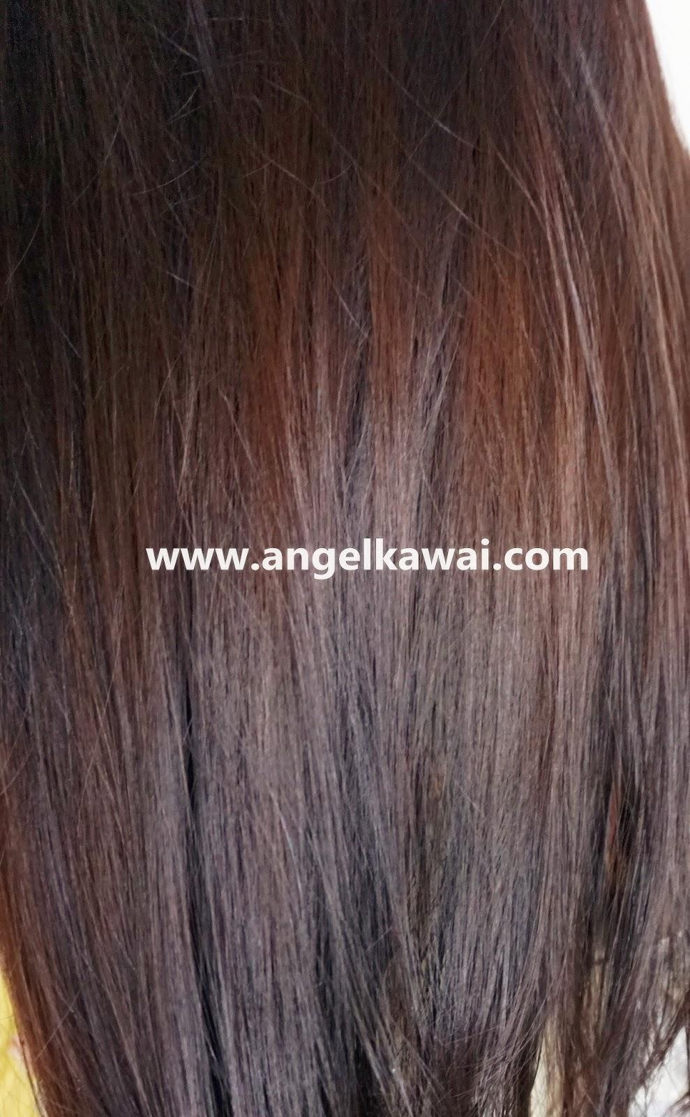 Warna Warna Henna Rambut Geraistylish