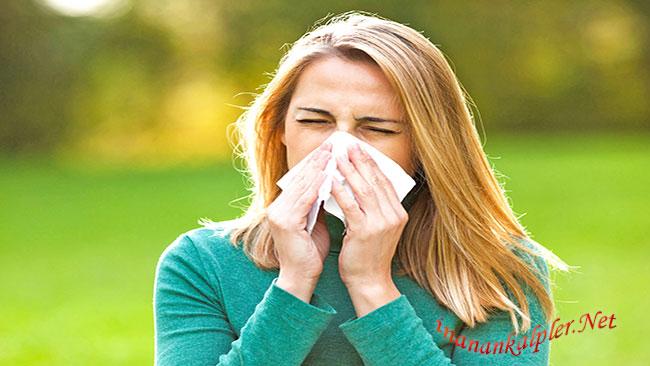 Alerjik Rinit İçin Ev İlaçları - www.inanankalpler.net