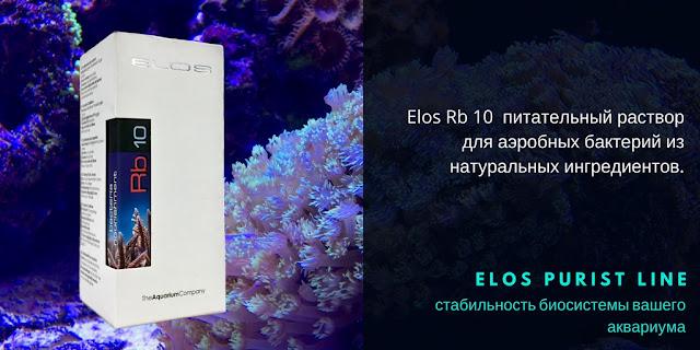 Elos Rb10