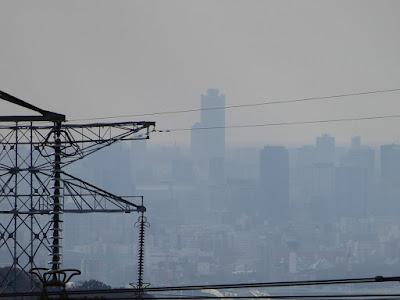 くろんど園地 展望台からの眺望 大阪府咲洲庁舎(さきしまコスモタワー)