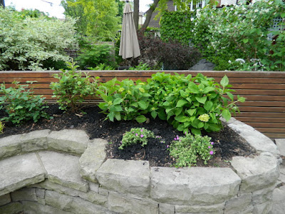 Wychwood Toronto new backyard perennial garden after by Paul Jung Gardening Services--a Toronto Gardening Company