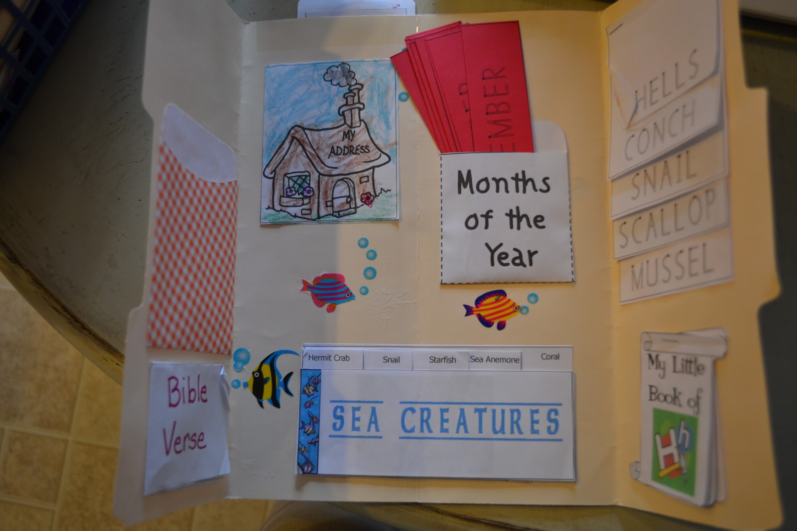 Thrifty Decorating Preschool Lapbooking It S Not Just For Homeschoolers
