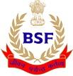 logo_BSF