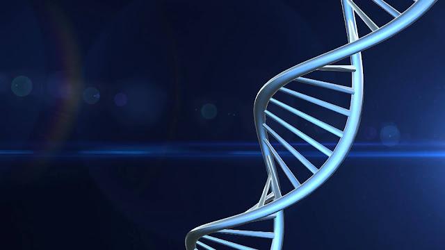 vaigyanik tathya, scientific facts about death, budhapa, telomere