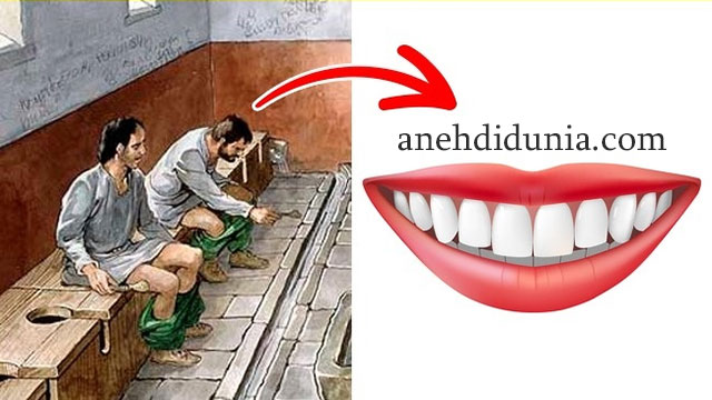 Air Seni Digunakan Untuk Membersihkan Mulut