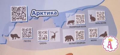 Интерактивная карта с информацией о животных Арктики
