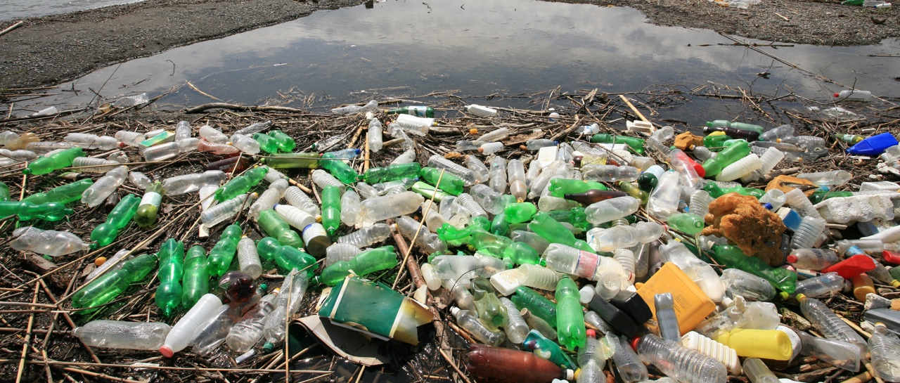 Alternatives Magazine: The Best Alternatives to Plastic ...