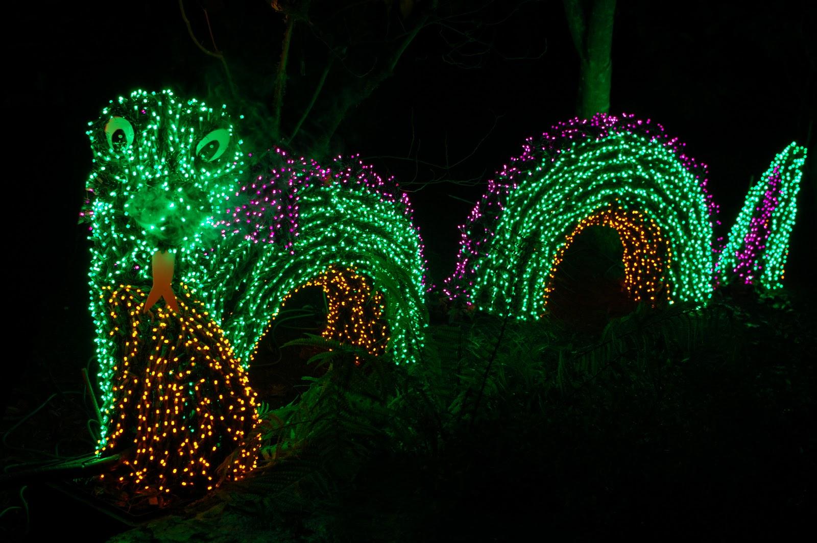 Bellevue botanical gardens christmas lights for Bellevue botanical garden lights