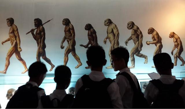 Jalan, Kunjungan, Trip, Sekolah, Museum, Sangiran, Purbakala, Fosil, UNESCO, Indonesia