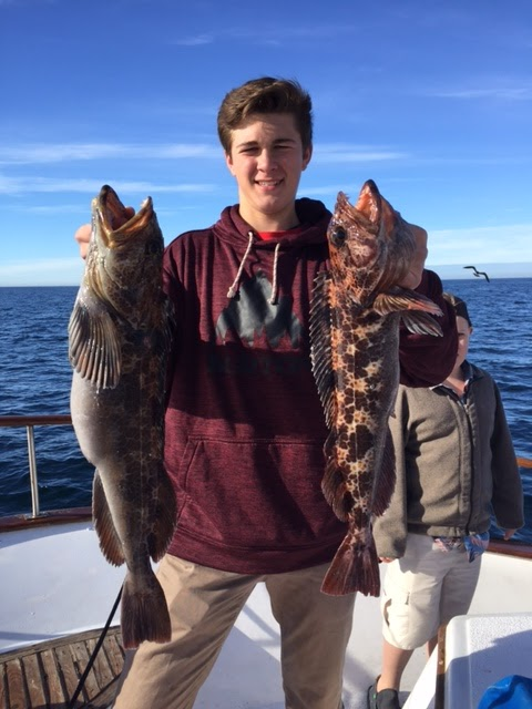 Fishing charters san diego sport spear fishing for Point loma sportfishing fish count