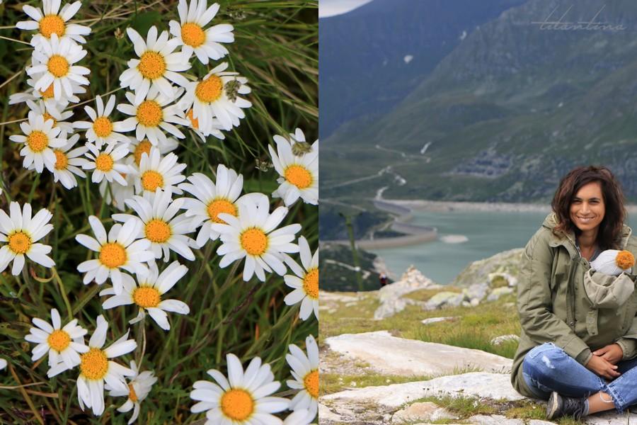 Wandern Österreich