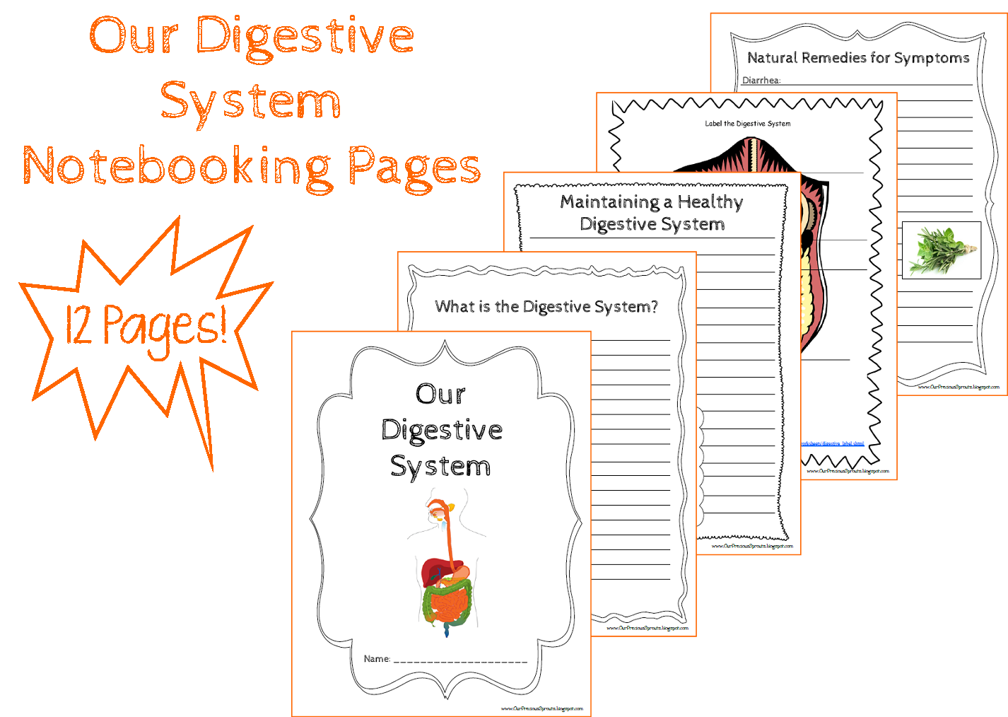 Our Precious Sprouts Homeschool Journal Free Digestive