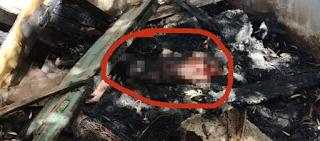 Κρήτη: Άγνωστοι έκαψαν ζωντανό σκυλί στο σπιτάκι του