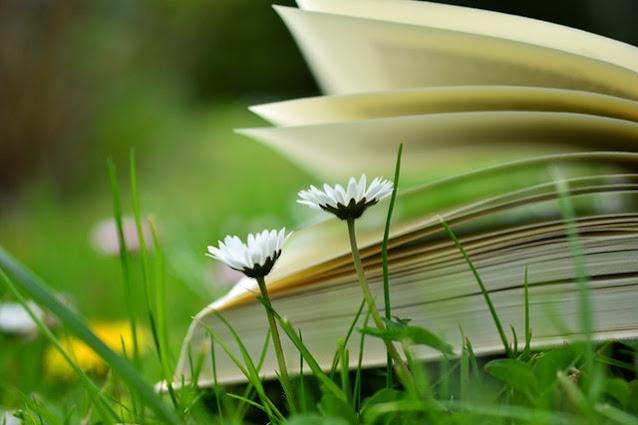 membaca buku bersama anak